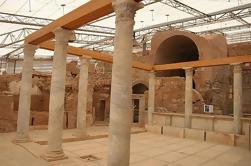 Tour privado: Ephesus y casas de terraza Tour de Kusadasi