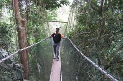 Excursión de un día a Taman Negara desde Kuala Lumpur