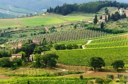 Private Tour: Chianti Regio Round Trip Experience uit Florence