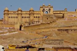 Experiencia privada en Jaipur y Agra desde Nueva Delhi en tren
