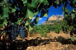 Private Priorat Wine Tour desde Barcelona