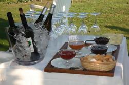 Degustaciones de vinos en Braga