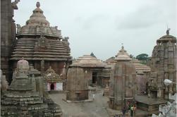 Visita al Templo de Bhubaneswar