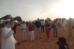 Dubai Mattino e Pomeriggio Tour Desert Safari con cena barbecue