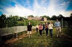 VIP Private Wine Tour con almuerzo de Harrisburg