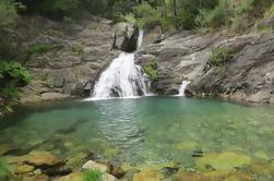 Dia inteiro Serra D 'Arga Passeio de cachoeiras, moinhos de água e Cornbread tradicional