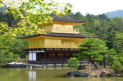 Paseo Privado de Kioto personalizado por un vehículo alquilado