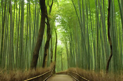 Private Kyoto Arashiyama Custom Tour de medio día por vehículo de alquiler