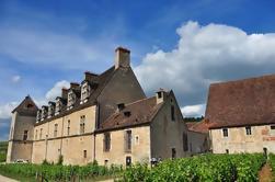 Tour de medio día por los viñedos de Cote de Nuits desde Dijon