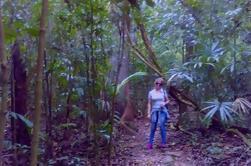 Excursión de Aventura de 3 Días en la Selva Lacandona desde San Cris