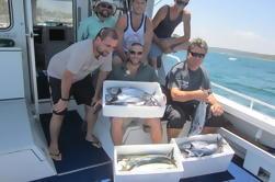 Reef Offshore ou Carta de Pesca Esportiva de Cronulla
