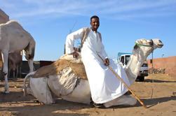 Excursión de un día al mercado de camellos de pequeños grupos desde El Cairo