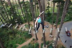 Curso de obstáculos de la adrenalina en la Bahía de Plenty