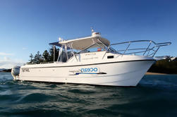 Private Half-Day ou Full Day Hamilton Island ou Airlie Beach Charter