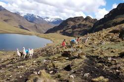 Lares Trek a Machu Picchu en 4 Días