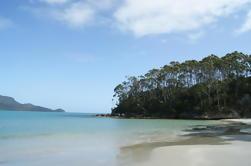 Excursión de un día a la isla de Bruny desde Hobart