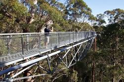 Excursión de 3 días al Suroeste de Perth incluyendo Río Margaret, Busselton y Albany