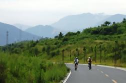 Excursión de un día al campo privado y Panda Tour alrededor de la montaña Qingcheng