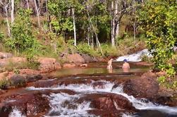 Excursión de un día a Litchfield desde Darwin Incluyendo Wangi Falls, Florence Falls y Buley Rockhole