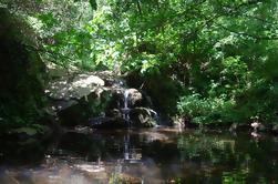 Excursión de senderismo guiada de Montseny desde Barcelona con almuerzo ecológico