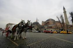 Tour de cruceros por el día completo en Estambul y Bosphorus