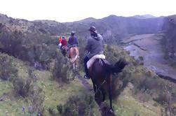Caminata de cuatro días a través de los Andes o Bosque Nuboso