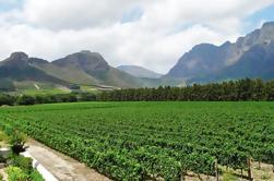 Excursión guiada de medio día de Franschhoek Winelands desde Ciudad del Cabo