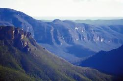 Excursión de un día a la fauna privada de Blue Mountains desde Sydney incluyendo Featherdale Wildlife Park