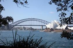 Excursão turística privada de meio dia em Sydney, incluindo Sydney Opera House Harbour Bridge e Bondi Beach