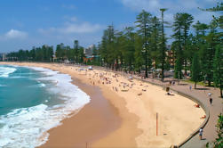 Visita privada de la ciudad de Sydney Tour Incluyendo Sydney Opera House y las playas del norte