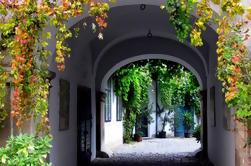 Giras ocultas en el paseo privado de la ciudad de Viena