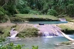 Blue Hole y River Gully Rainforest Adventure Tour desde Runaway Bay