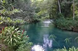 River Gully Rainforest Adventure desde Montego Bay