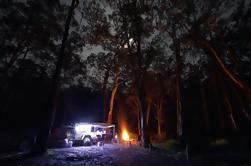 Excursion privée de 5 jours en 4x4 à partir de Sydney, y compris Hunter Valley, Barrington Tops et Oxley Wild Rivers National Park