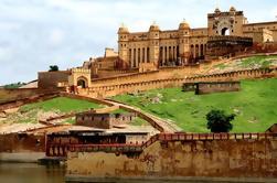 Excursión privada de día completo a los fuertes reales y palacios de Jaipur desde Delhi