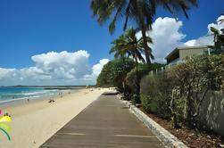 Excursión de un día a Sunshine Coast y Noosa Heads desde Gold Coast