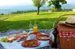 Tour de vinos y picnic regional en una finca de Vinho Verde