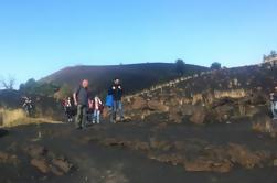 Excursión de medio día al Monte Etna