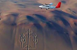 Paracas Shore Excursion: Excursión a las Líneas de Nazca