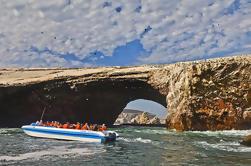 Tour en Grupo Islas Ballestas desde el Puerto de San Martín