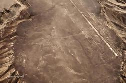 Líneas de Nazca y Huacachina Oasis de San Martín P