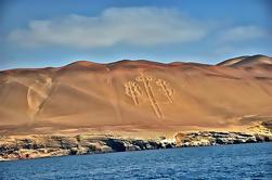 Islas Ballestas y Paracas Reserva desde San Mar