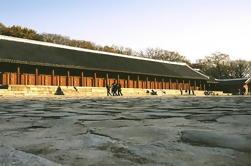 Tour de Patrimonio de la mañana en Seúl, incluido el Palacio de Changdeokgung