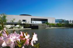 Excursión a pie del Museo de Seúl