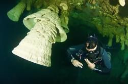 Buceo en Cenote Zapote para Buceadores Experimentados