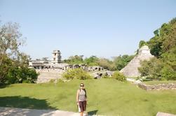 Tour de Día Completo: Maravillas de Agua Azul Cascadas y Ruinas de Palenque