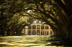 Combo Oak Alley Plantation y 16 pasajeros Air-boat Swamp Tour