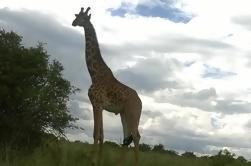 1 viaje de un día a Hells Gate y el lago Naivasha Desde Nairobi