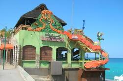 Excursiones privadas de Montego Bay