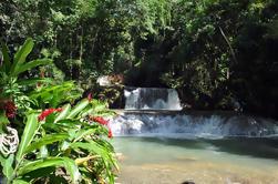 Excursión privada de la costa sur de Jamaica